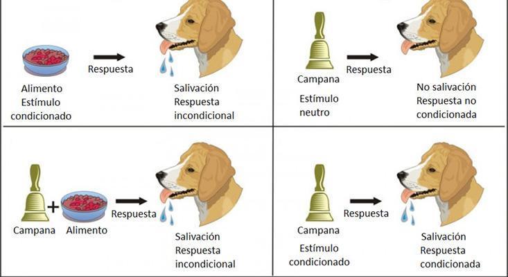 conductismo-clasico